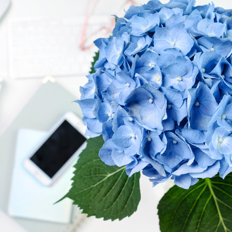 Why Social Media Marketing is Ideal for Your Wedding Business