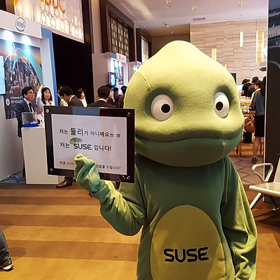 SUSE Mascot Doll Making