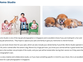 Top Pet Photographers in Singapore
