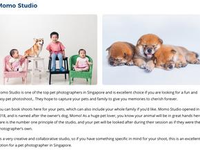 Top Pet Photographers in Singapore