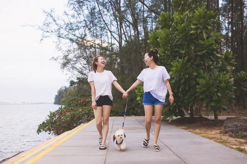 momo-studio-singapore-pet-photography-do