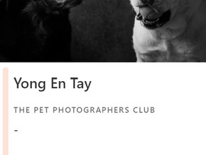 Top 100 International Pet Photographers of the Year