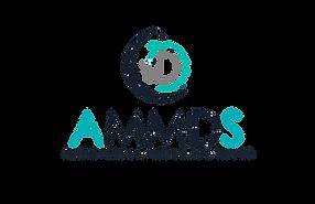 LogoAcademiaAMMDS-03 copia.png