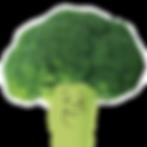 BroccoAsset 4_300x.png