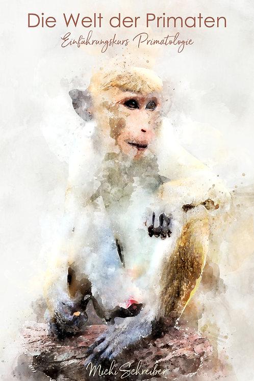 4-wöchiges Seminar - Die Welt der Affen