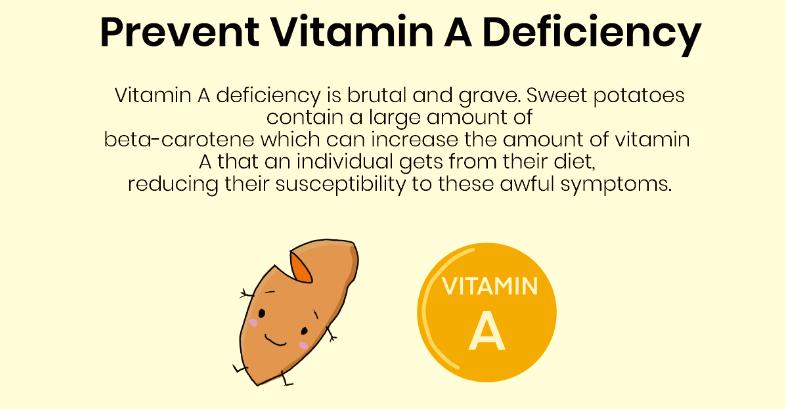 Sweet Potato & Vitamin A