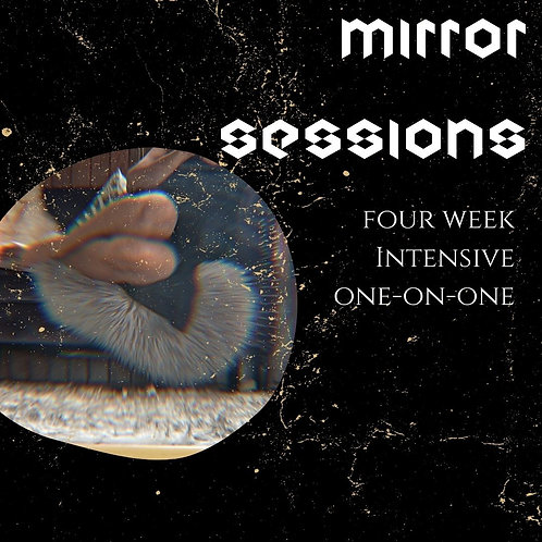 Mirror Sessions (4 Week Package)