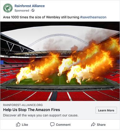 Rainforest Alliance Wembley FB Post.png