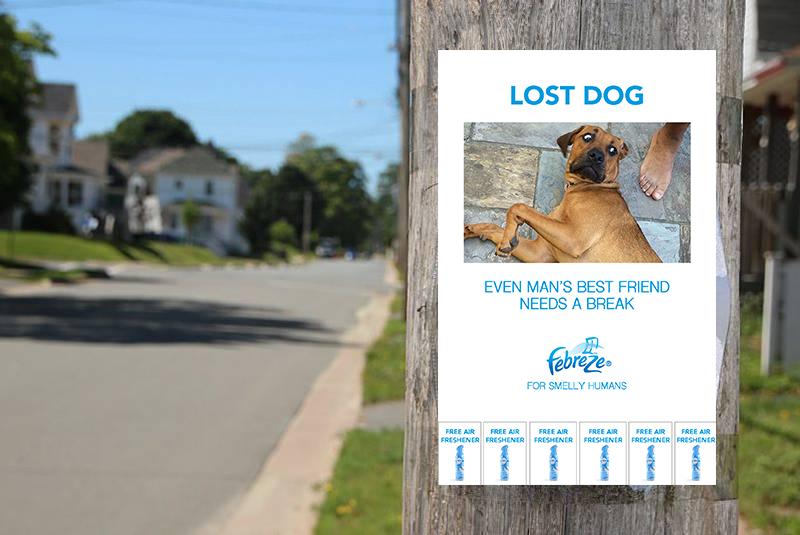 Missing Dog Poster (Situational) v3.png