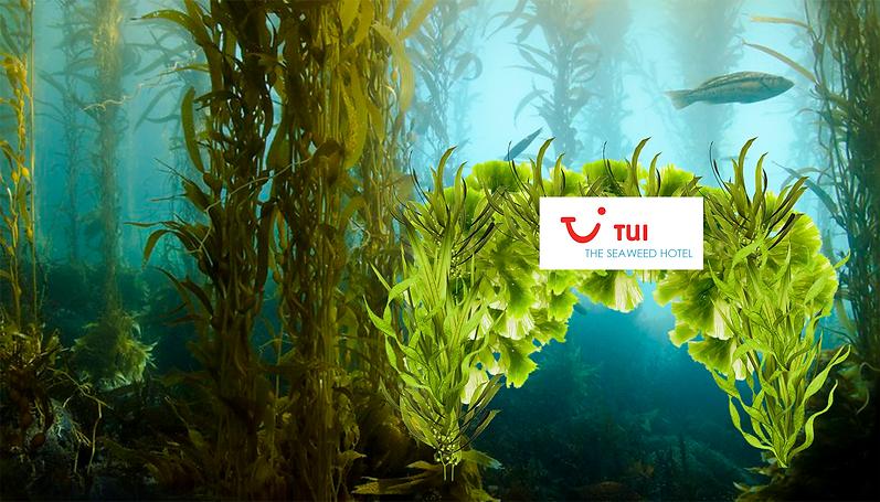 TUI Seaweed Hotel.png