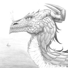 Dragon pencil illustration