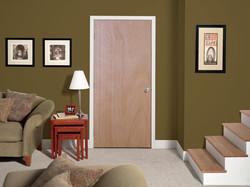 Residential Flush Door