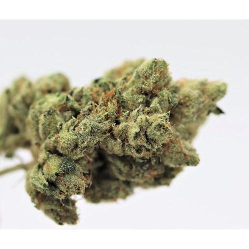 1 OUNCE of GORILLA GLUE #4  -  29% THC  -  30% OFF!!