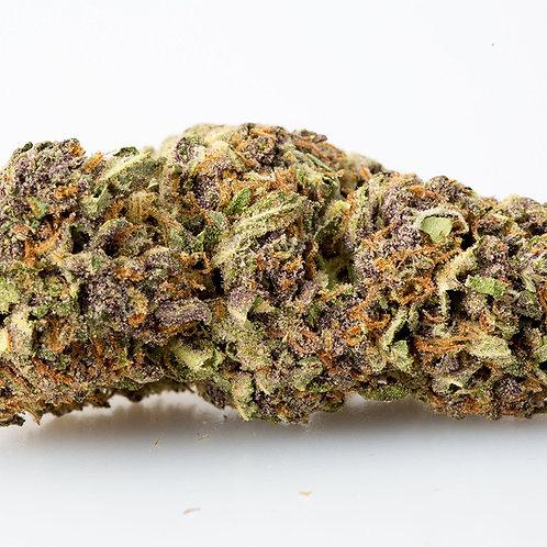 Purple Jager
