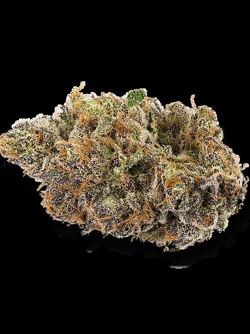 Purple Urkle - Indica Hybrid - 26% THC