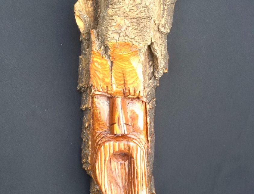Bark Spirit Carving - Spiritual Integration (Cottonwood)