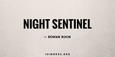 Night Sentinel - Rowan Rook