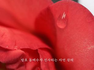 [엔수스] 크림 제품 영상
