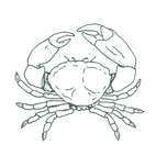 crab-post-icon.png