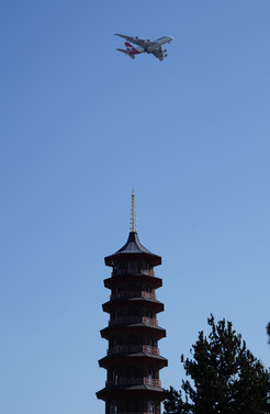 150415 Kew (59).JPG.jpg