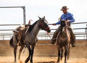Notorious Horsemanship: In the Round Pen with Tristen Baroni