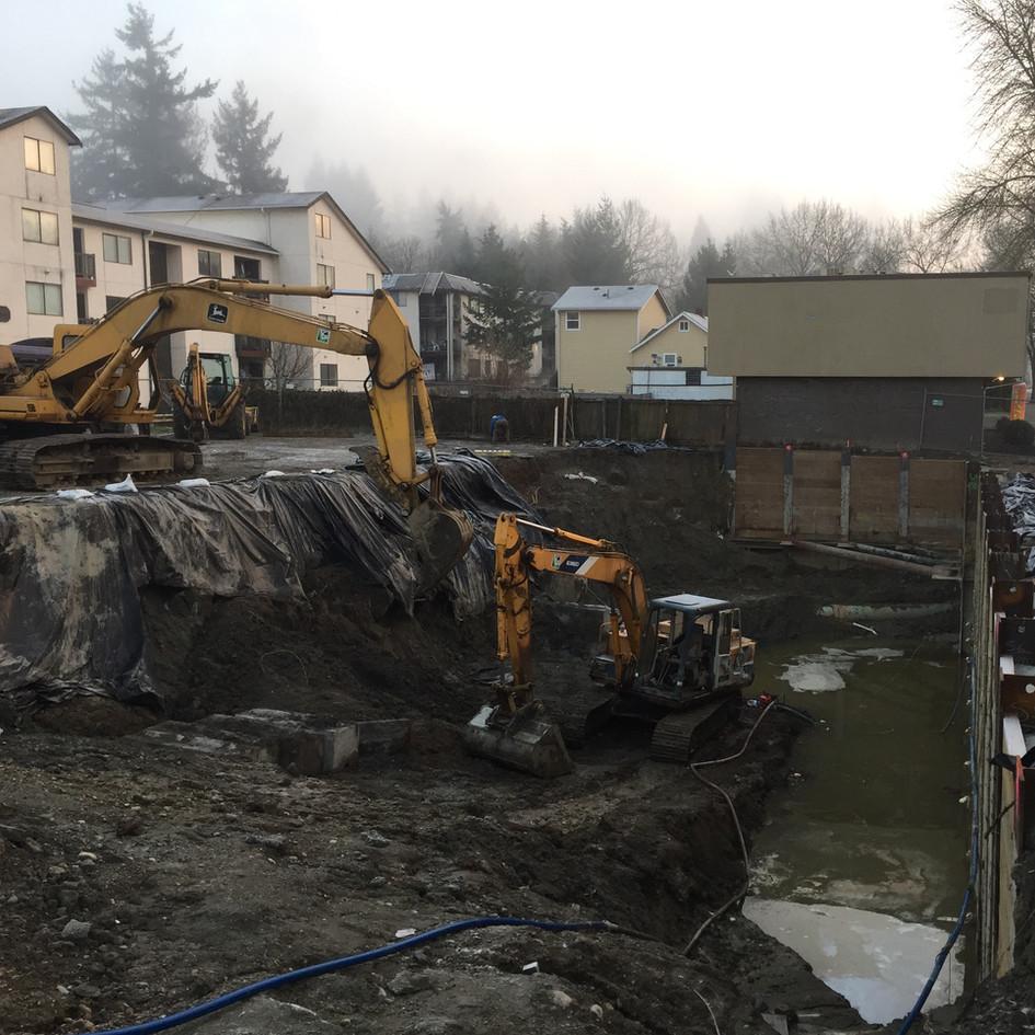 Environmental Site Remediation
