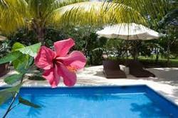 Scuba Total Cancun | Diving pool