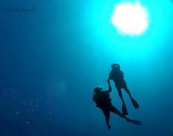 scuba dive cancun, diving cancun