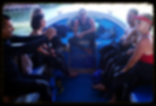 scuba diving cancun,scuba total,dive cenote,scuba cancun,cancun diving,whaleshark cancun,dive cancun,cenote cancun,diving in cancun,buceo cancun,buceo cenote,diving cancun,cancun scuba,scubatotal, scuba cenotes,