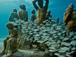snorkel cancun, scuba cancun total