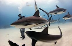 scuba total cancun(1).jpg