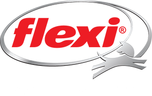 flexi logo.png
