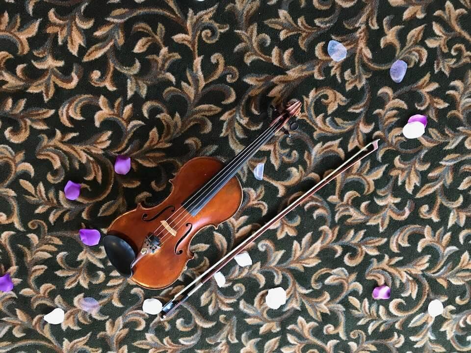 Violin on carpet Lake Windsor CC