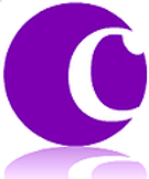 CSQ logo for paperwork.png