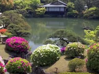How Koi Gardens inspire me as a Composer