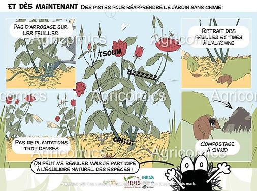 BD_TacheNoire_Agricomics_IRHS_Tutelles_4