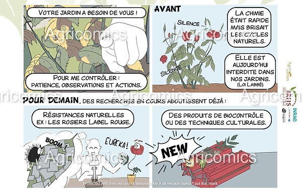 BD_TacheNoire_Agricomics_IRHS_Tutelles_3