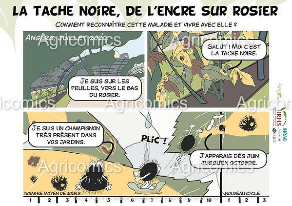 BD_TacheNoire_Agricomics_IRHS_Tutelles_1