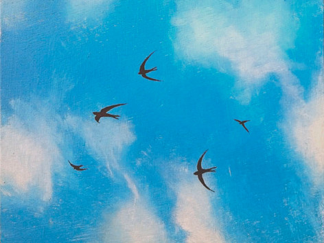 """Swifts"" by Peb Burfoot"