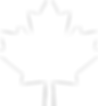 toppng.com-white-maple-leaf-301x326.png