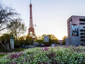 Invitation: Launch of the Australia Now France scientific program in Paris