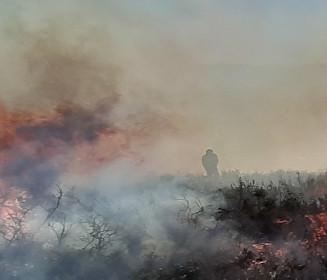 Bushfire Community