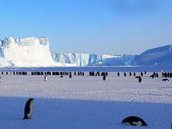 sea-nature-ocean-wilderness-snow-cold-940564-pxhere.com