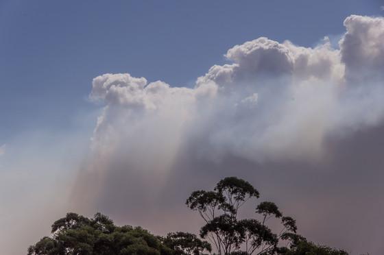 The Bushfire Behaviour and Management Group The University of Melbourne