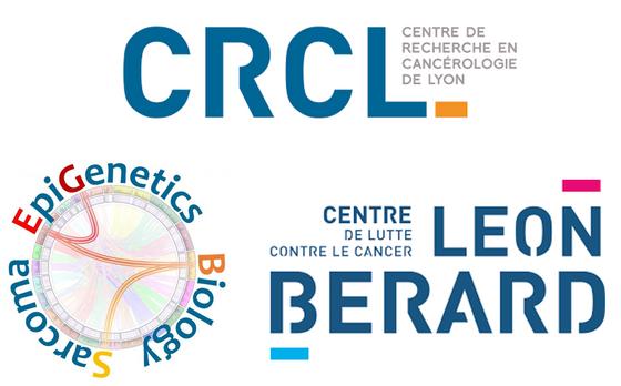 Post-doctoral position in molecular biology of sarcomas
