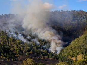 The Bushfire Behaviour and Management Group University of Melbourne