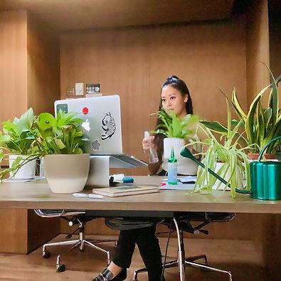 Terada Plants - Facebook virtual workshop.jpg