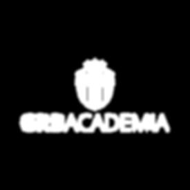 logo-Academia3.png