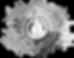 Rockstar Logo black and white contrast.p