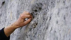 climb-4497852.jpg